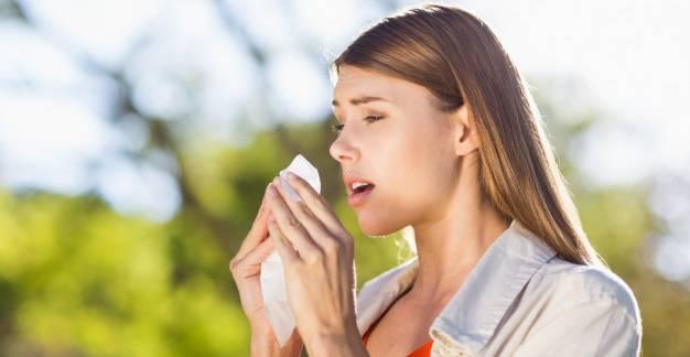 Tanácsos-e a parlagfű allergiát parlagfűvel kezelni?