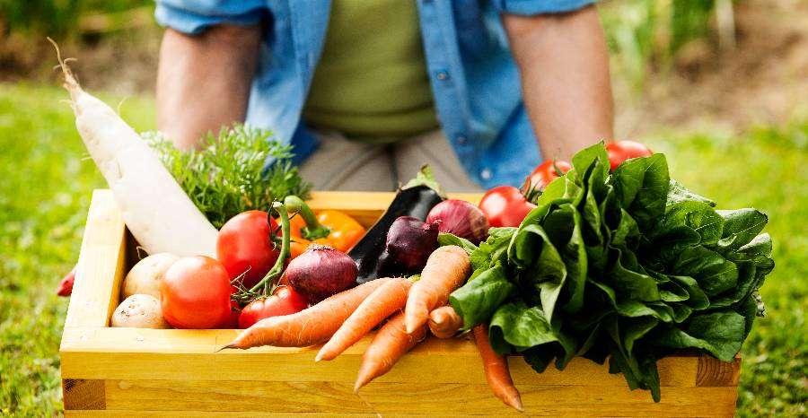 Milyen zöldségeket érdemes fogyasztanunk?